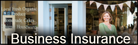 Small Business Insurance